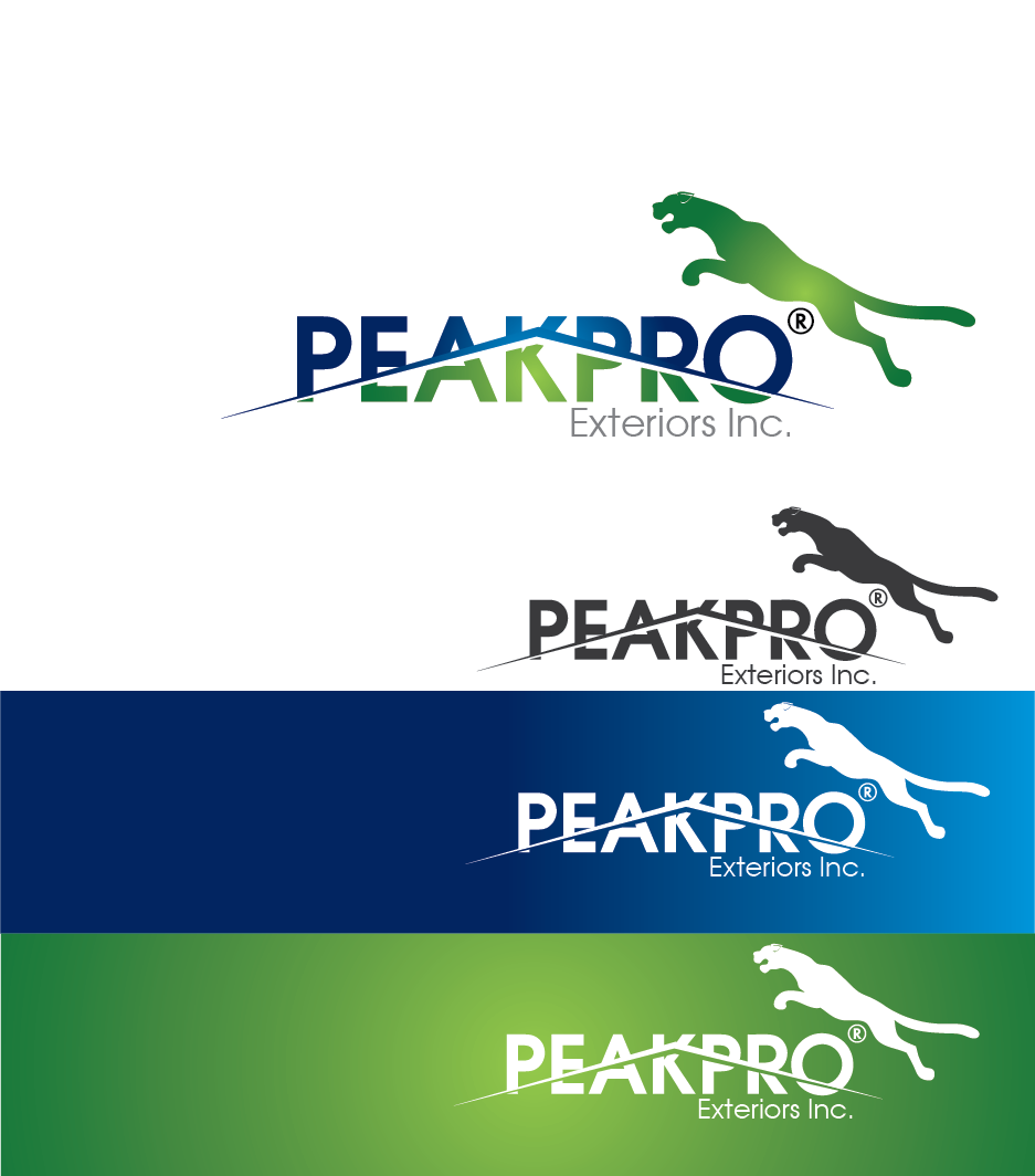Logo Design by Private User - Entry No. 152 in the Logo Design Contest Captivating Logo Design for Peakpro Exteriors Inc..