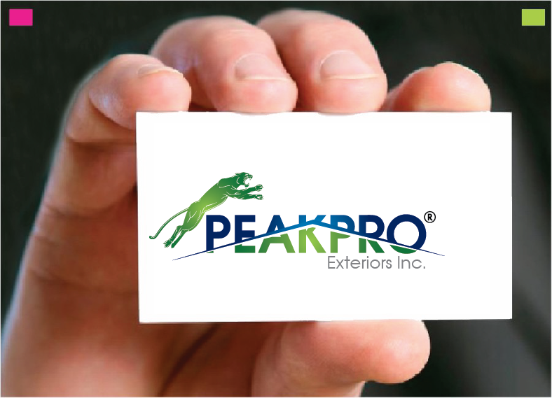 Logo Design by Private User - Entry No. 164 in the Logo Design Contest Captivating Logo Design for Peakpro Exteriors Inc..
