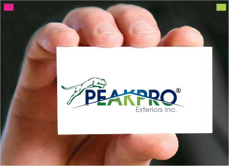Logo Design by Private User - Entry No. 168 in the Logo Design Contest Captivating Logo Design for Peakpro Exteriors Inc..
