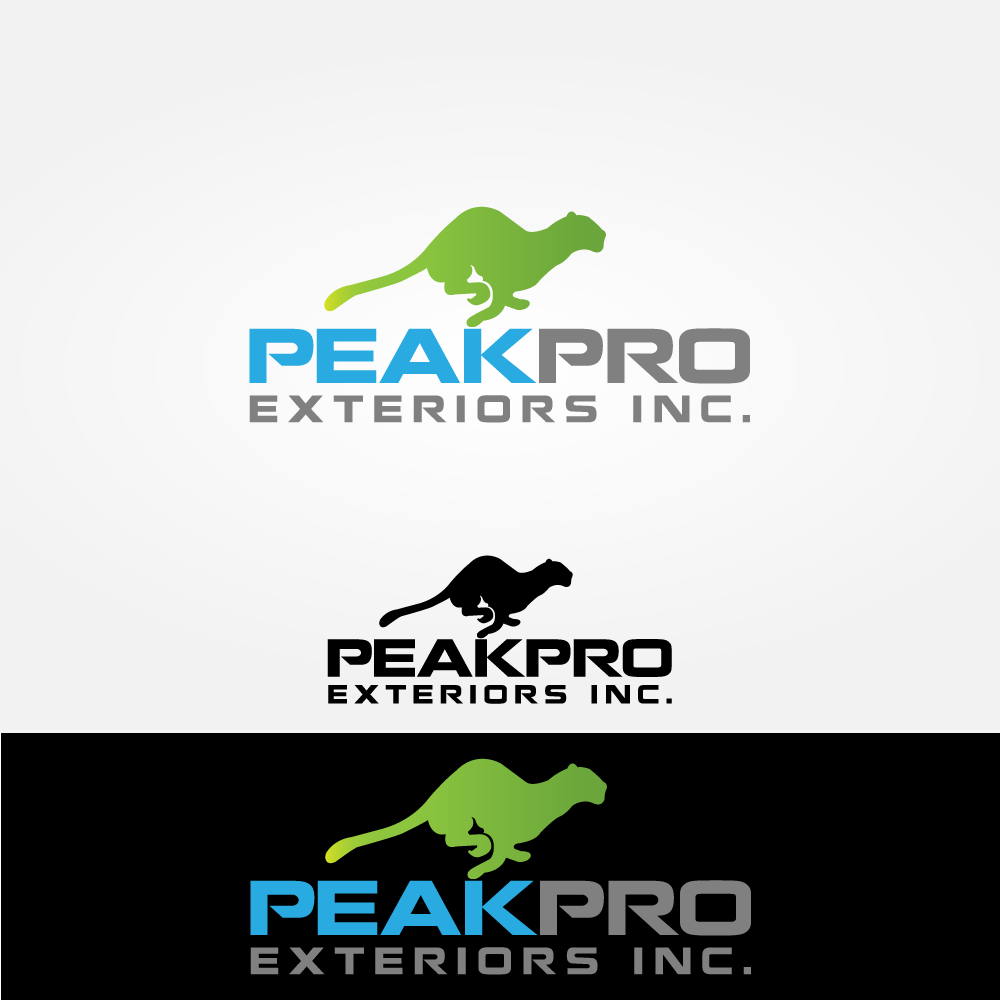 Logo Design by rockin - Entry No. 169 in the Logo Design Contest Captivating Logo Design for Peakpro Exteriors Inc..