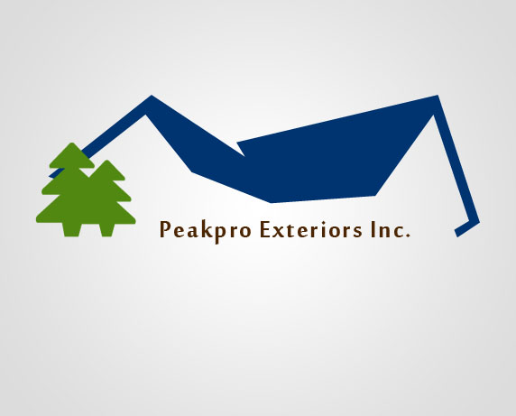 Logo Design by Private User - Entry No. 184 in the Logo Design Contest Captivating Logo Design for Peakpro Exteriors Inc..