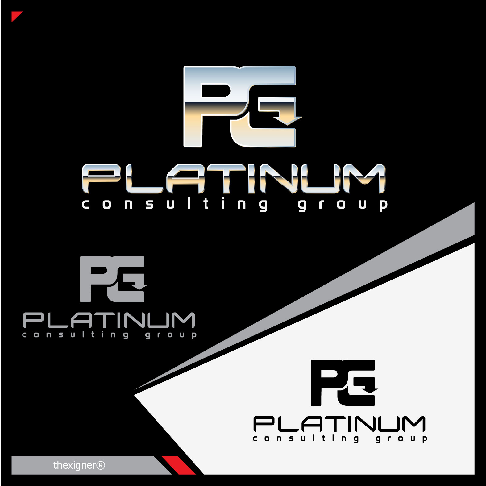 Logo Design by lagalag - Entry No. 25 in the Logo Design Contest Captivating Logo Design for Platinum Consulting Group.