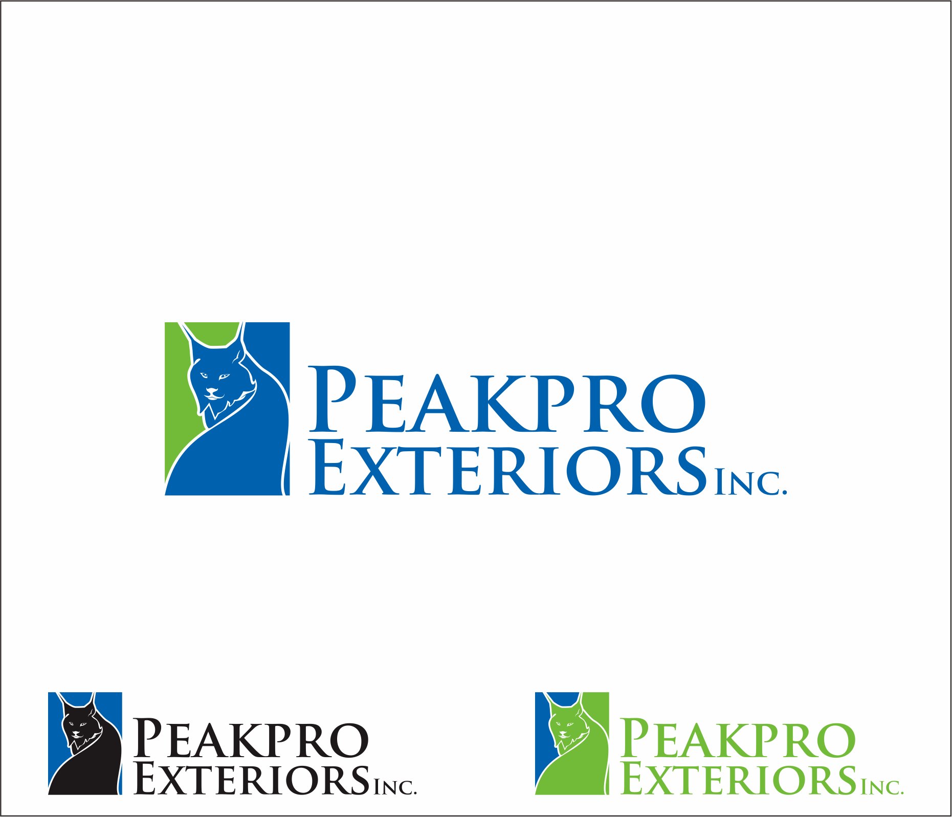 Logo Design by Armada Jamaluddin - Entry No. 186 in the Logo Design Contest Captivating Logo Design for Peakpro Exteriors Inc..