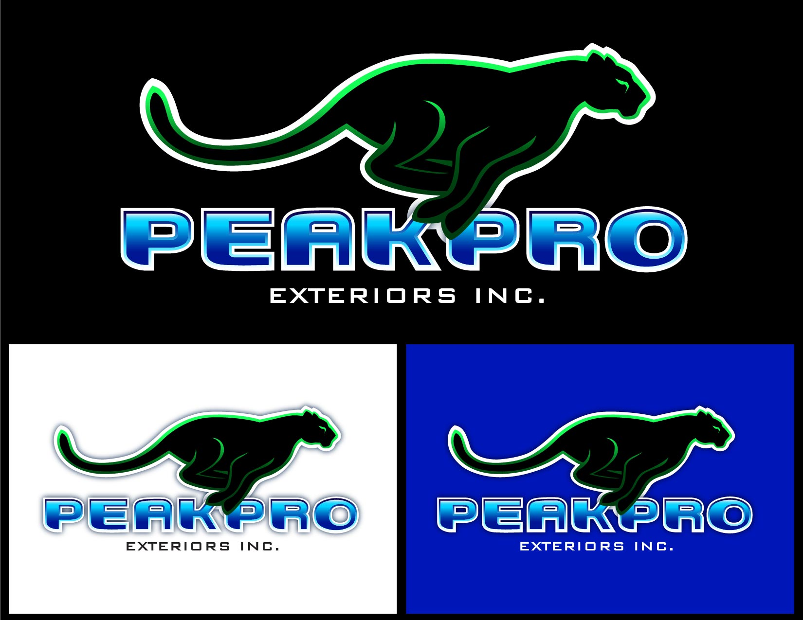 Logo Design by Emil Angelo Osias - Entry No. 188 in the Logo Design Contest Captivating Logo Design for Peakpro Exteriors Inc..
