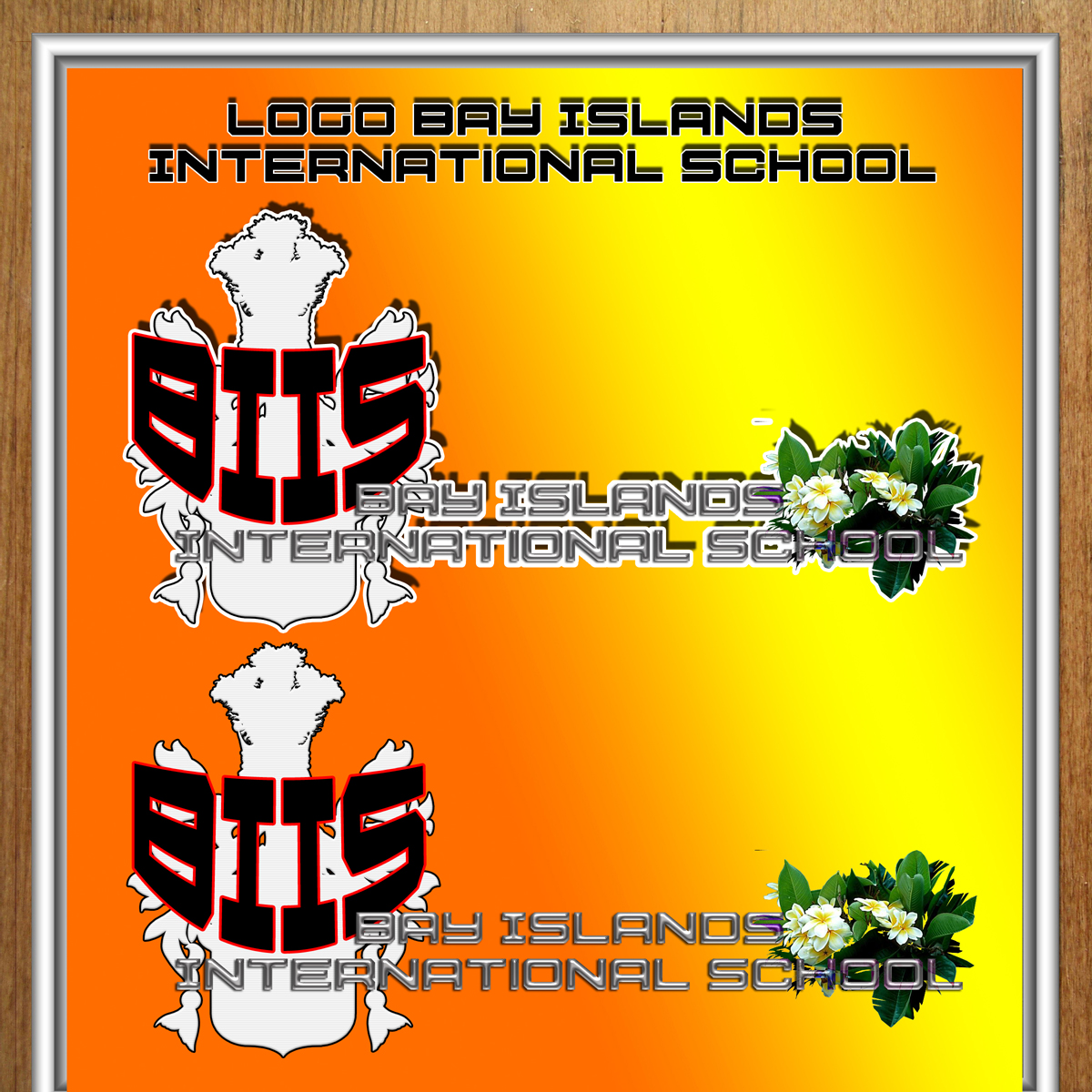 Logo Design by MITUCA ANDREI - Entry No. 16 in the Logo Design Contest Creative Logo Design for Bay Islands International School.