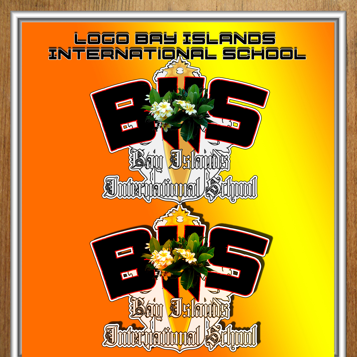 Logo Design by MITUCA ANDREI - Entry No. 17 in the Logo Design Contest Creative Logo Design for Bay Islands International School.