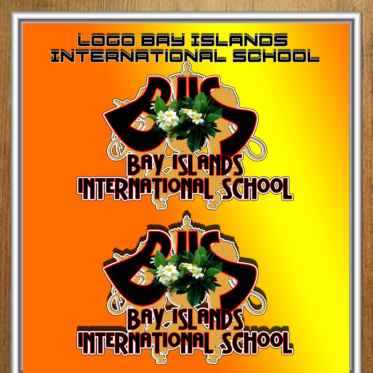 Logo Design by MITUCA ANDREI - Entry No. 18 in the Logo Design Contest Creative Logo Design for Bay Islands International School.