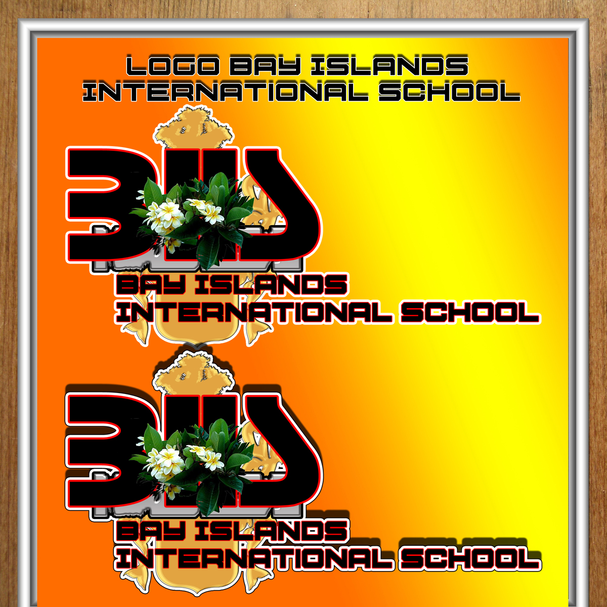Logo Design by MITUCA ANDREI - Entry No. 20 in the Logo Design Contest Creative Logo Design for Bay Islands International School.