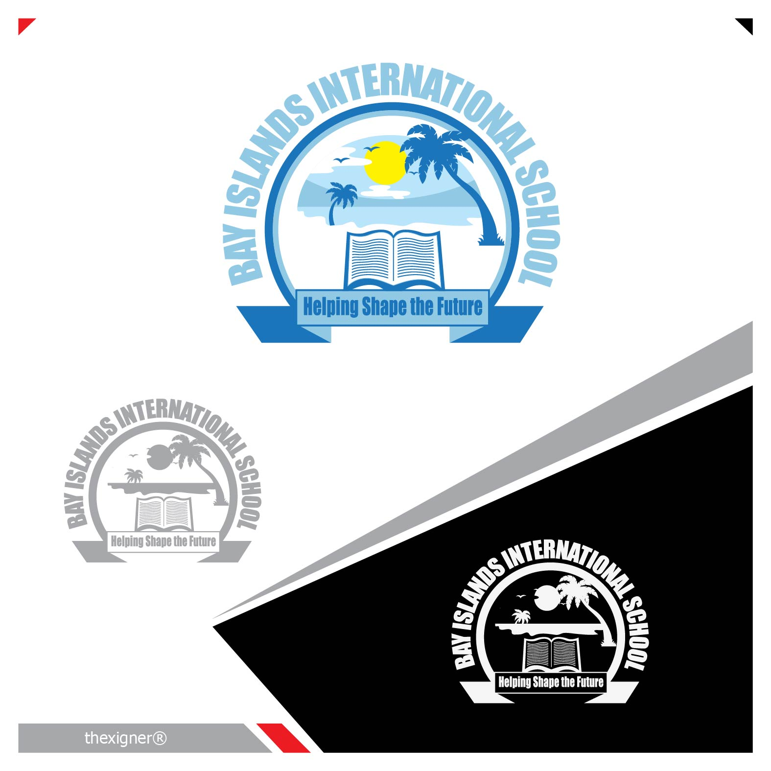 Logo Design by lagalag - Entry No. 38 in the Logo Design Contest Creative Logo Design for Bay Islands International School.