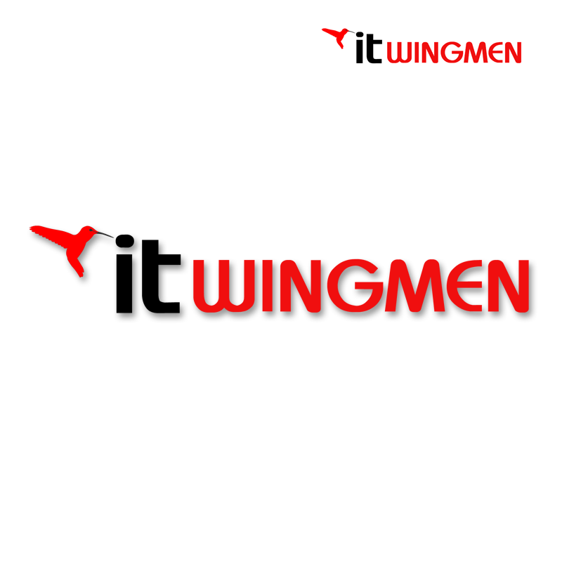 Logo Design by Robert Turla - Entry No. 30 in the Logo Design Contest New Logo Design for IT Wingmen.