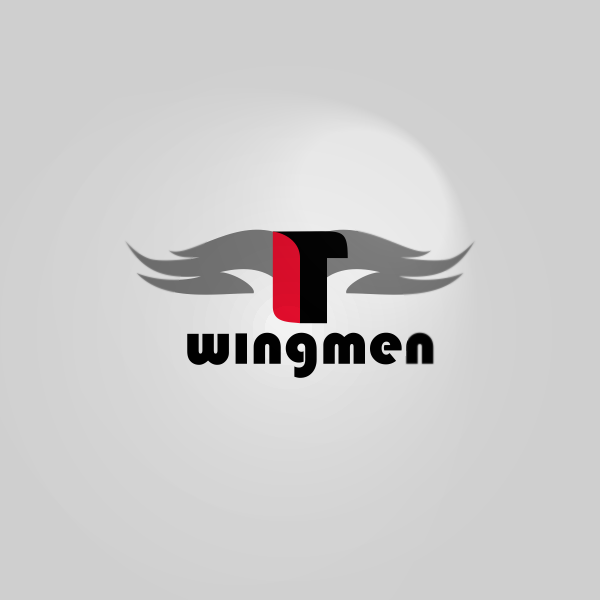 Logo Design by Private User - Entry No. 96 in the Logo Design Contest New Logo Design for IT Wingmen.