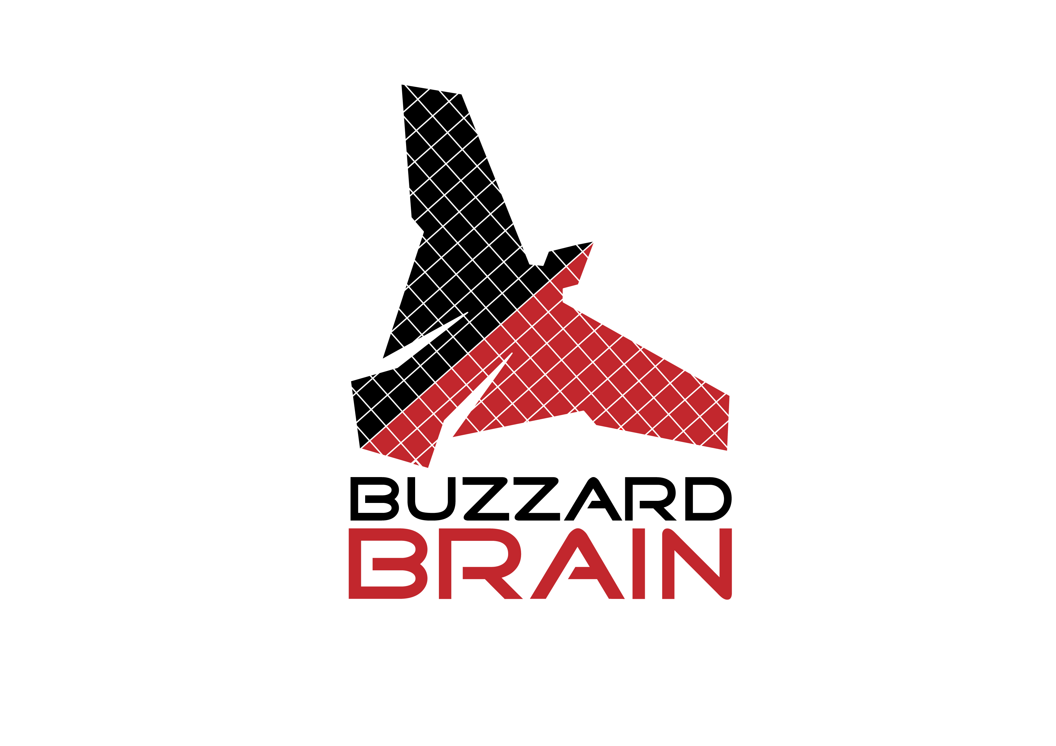 Logo Design by 3draw - Entry No. 13 in the Logo Design Contest Buzzard Brain Logo Design.