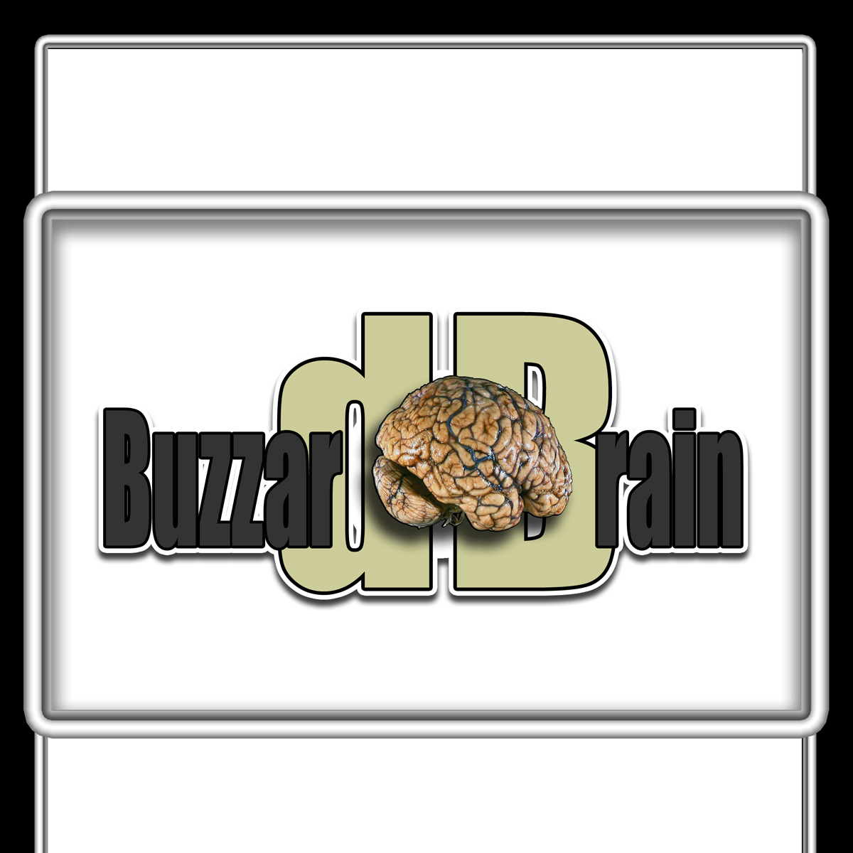Logo Design by MITUCA ANDREI - Entry No. 18 in the Logo Design Contest Buzzard Brain Logo Design.