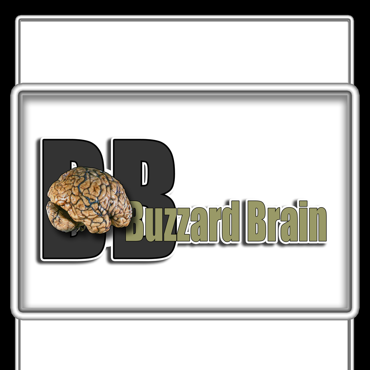 Logo Design by MITUCA ANDREI - Entry No. 19 in the Logo Design Contest Buzzard Brain Logo Design.