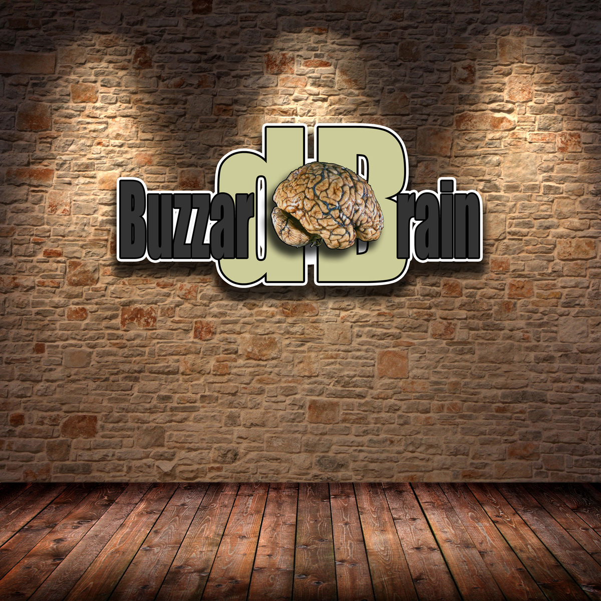 Logo Design by MITUCA ANDREI - Entry No. 23 in the Logo Design Contest Buzzard Brain Logo Design.