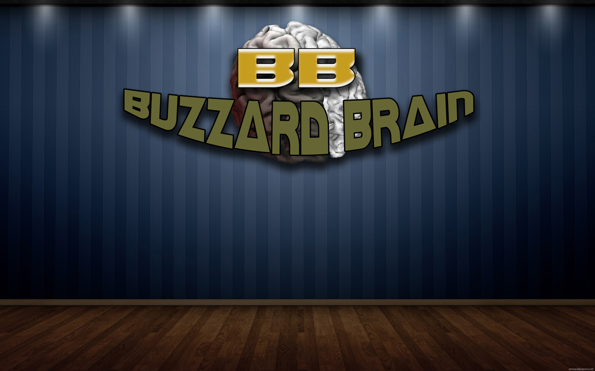 Logo Design by MITUCA ANDREI - Entry No. 25 in the Logo Design Contest Buzzard Brain Logo Design.
