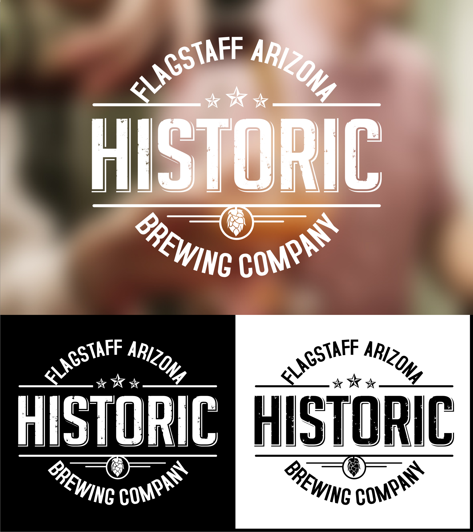 Logo Design by Tille Famz - Entry No. 42 in the Logo Design Contest Unique Logo Design Wanted for Historic Brewing Company.