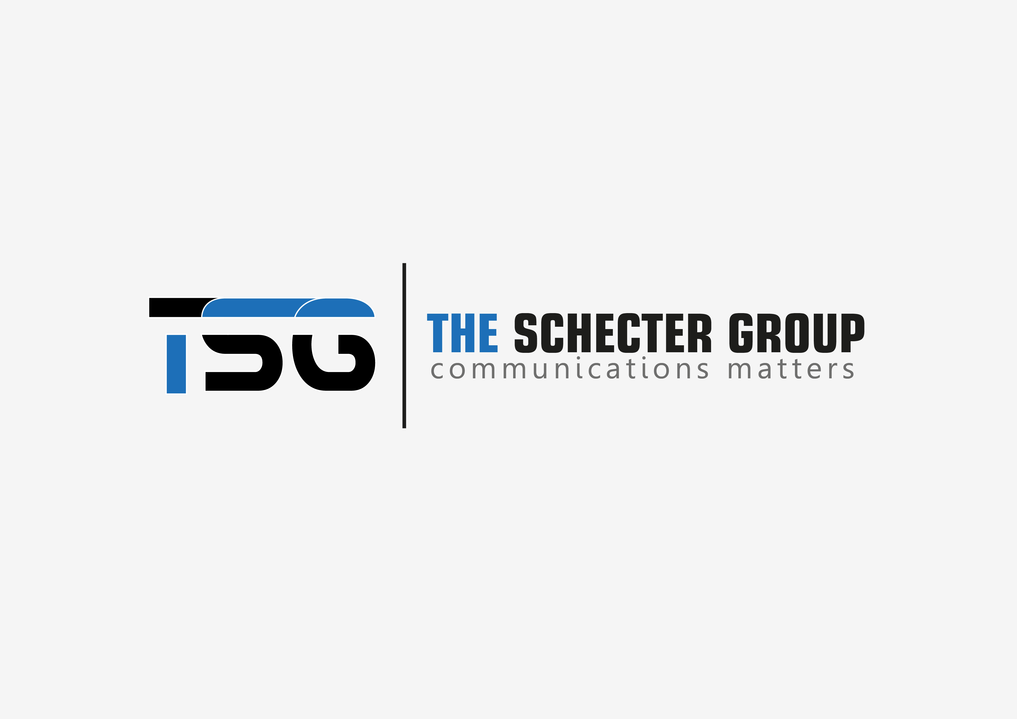Logo Design by 3draw - Entry No. 23 in the Logo Design Contest Inspiring Logo Design for The Schecter Group.