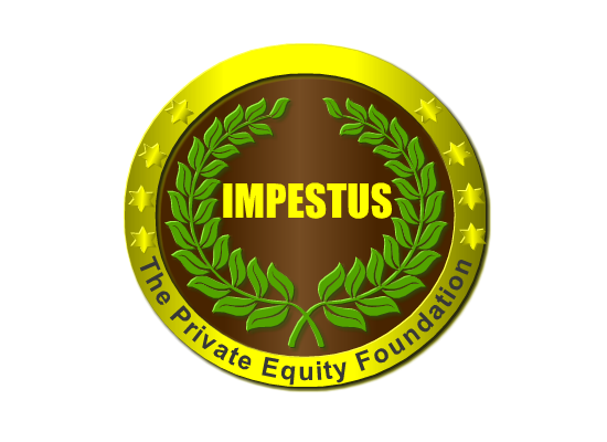 Logo Design by Ismail Adhi Wibowo - Entry No. 27 in the Logo Design Contest New Logo Design for Impetus - The Private Equity Foundation.