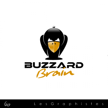 New logo by Les-Graphistes for plockyer