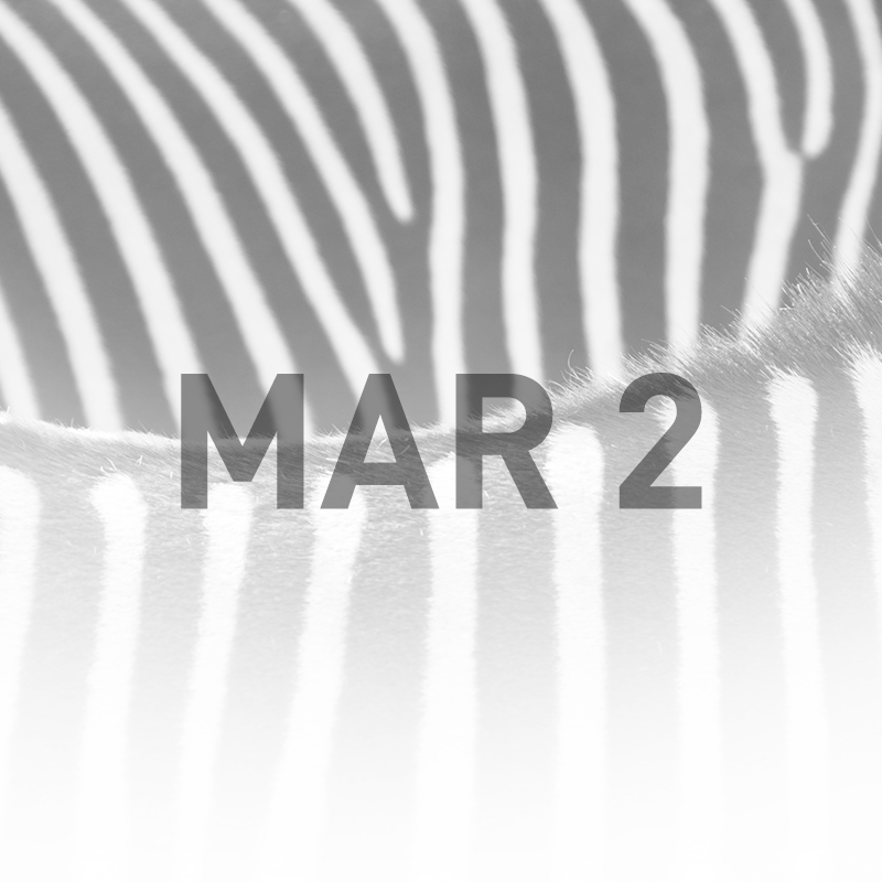 What color are zebras? (Coming March 2)