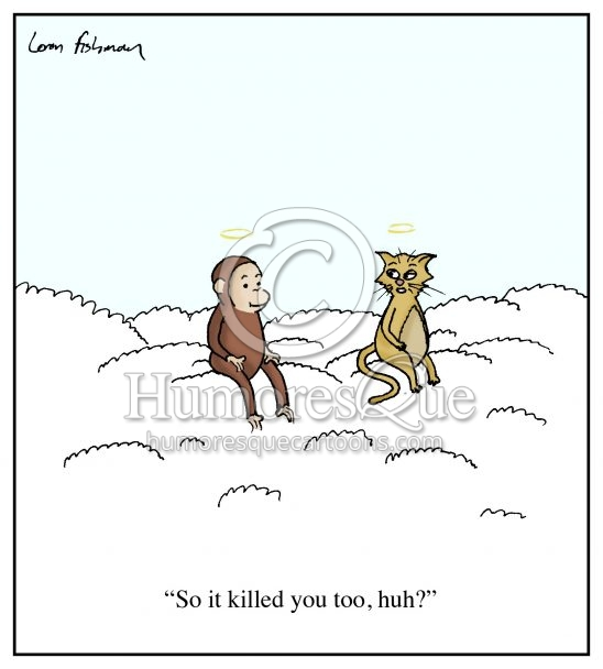 curious george and cat in heaven cartoon