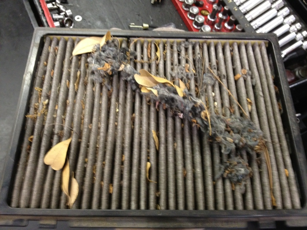 Cabin Air Filter Cost >> Does My Car Really Need This Service Cabin Air Filter