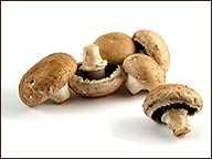 Mushroom Madness!