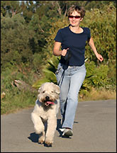 Get Fit With Fido!
