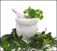 Herbs 4 Health!