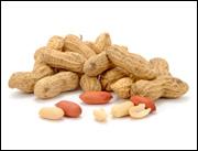 Peanut Allergies Go Bye Bye?!