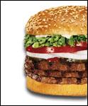 Hamburger Havoc!