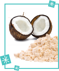 Alternative Flours: Coconut