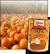 No Problem Finding Pumpkin!