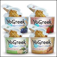 My Big Fun Greek Yogurt!