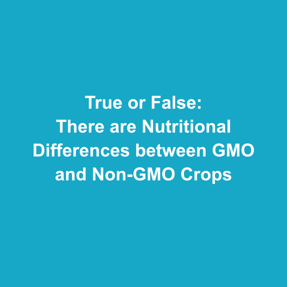 How much do you know about GMOs?