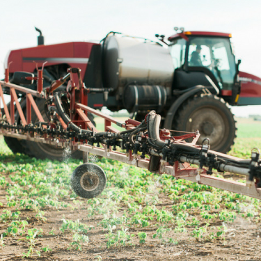 Farmer safely applies pesticides to protect soybean plants.