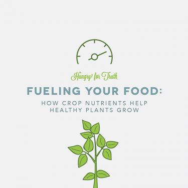 Hungry for Truth Crop Nutrients + Farm Sustainability