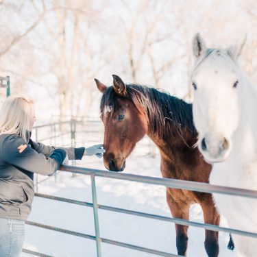 Maddy pets her two horses on her farm in South Dakota.