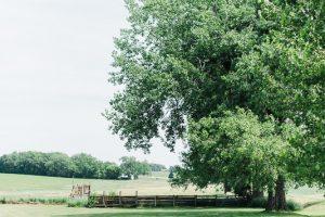 scott-farm