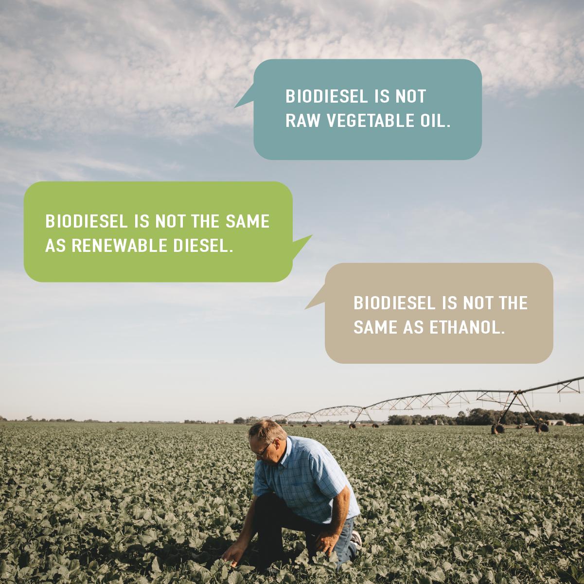 national-bio-diesel-day