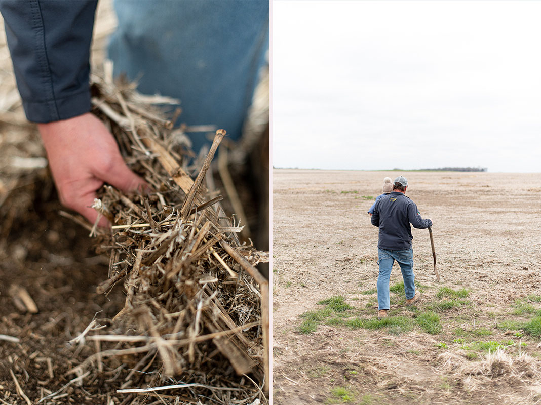 sequestering-soil