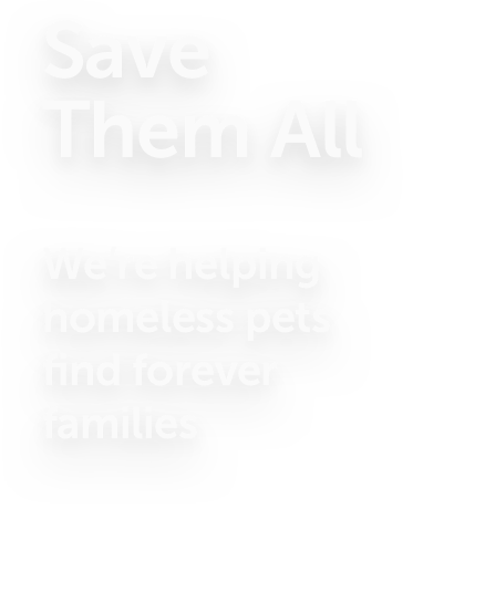 Helping homeless pets message.
