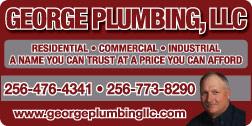 Website for George Plumbing, LLC