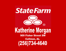 Website for Katherine Morgan - State Farm