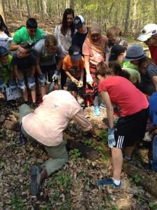 Teaching about the salamander habitat