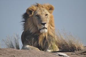 Africa Trip 669
