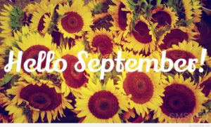 sun-flowers-hello-september-quote-2015