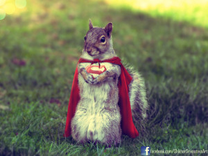supersquirrel___the_last_squirrel_of_krypton_by_shikharsrivastava-d5c9oxb