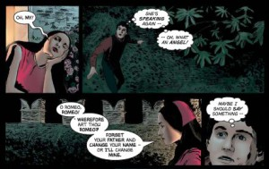 Romeo and Juliet Graphic Novel photo 5